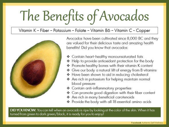 Avocados Valued for Delicious Taste and Amazing Health Benefits
