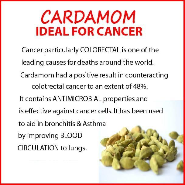 CARDAMOM IDEAL FOR CANCER